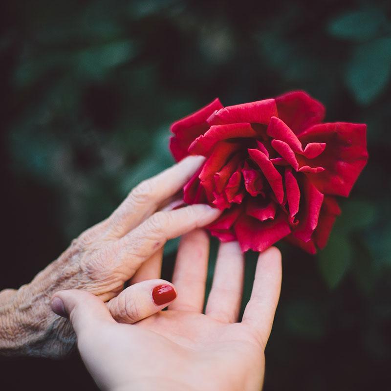 Maladie Alzheimer - Florence Barreau Musicothérapeute